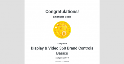 Certificazione Google Display & Video 360 Brand Controls Basics